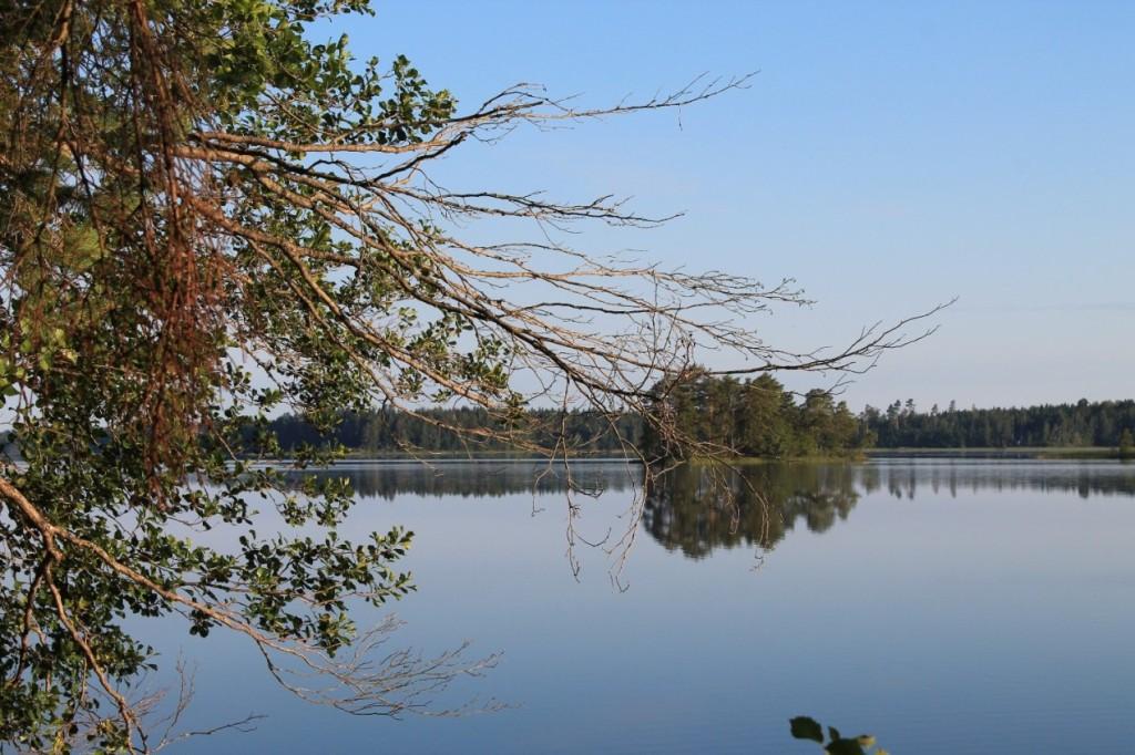 Pinkjärvi Eurajoella