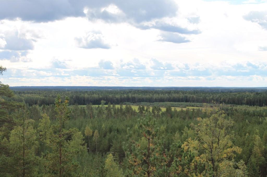 Näkymä Hevonlinnan näkötornista