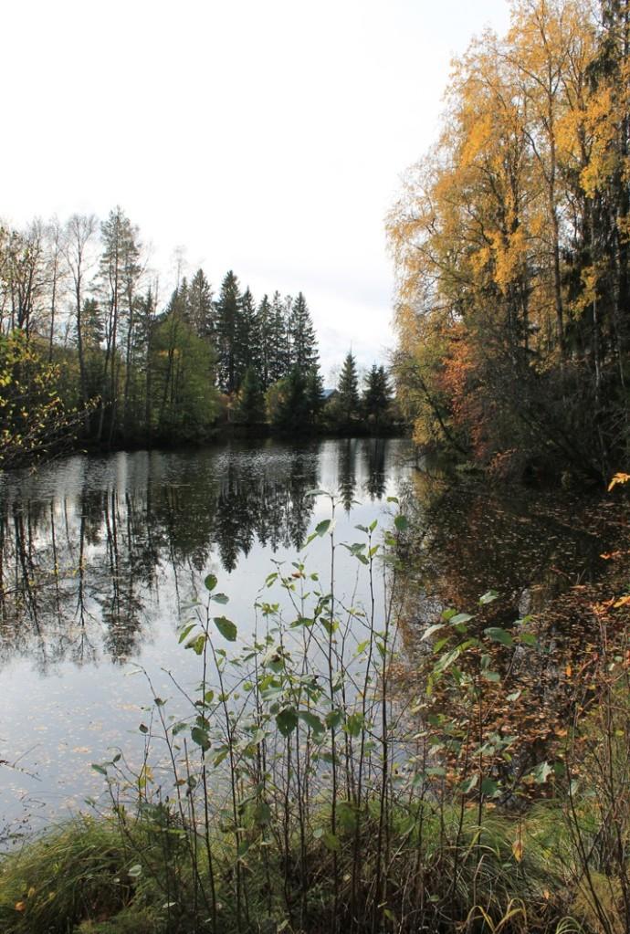Myllylähde syksyllä