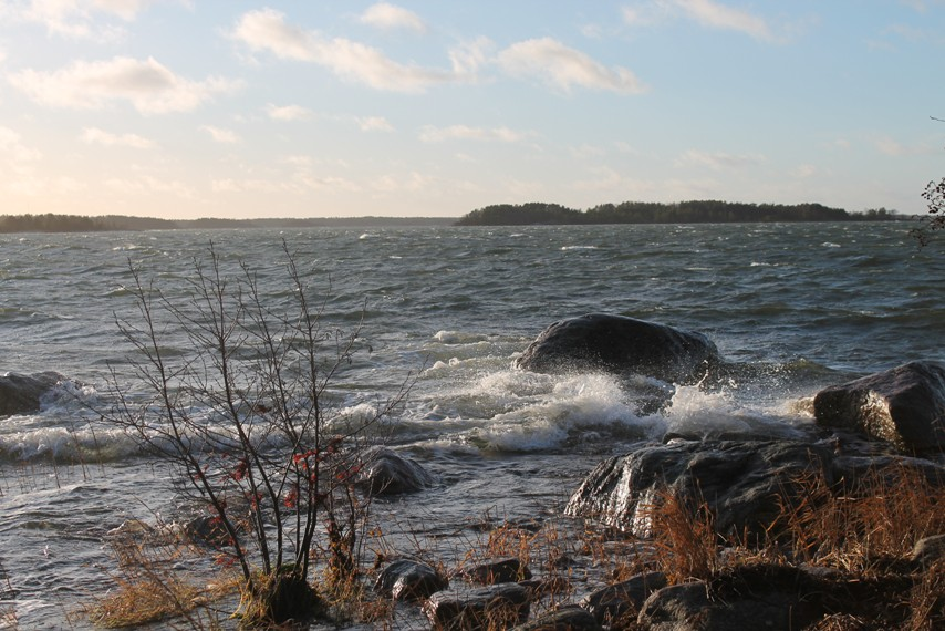 Myrskytuuli lyö aaltoja rantaan Pyhärannan Hierkonpolulla