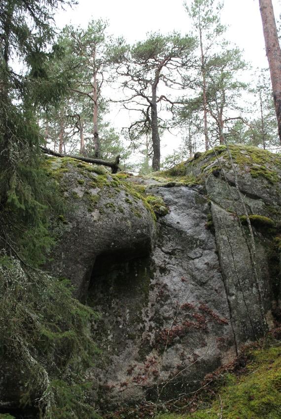Kallio Hirvensalon Toijaisissa