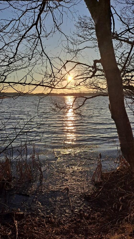 Littoistenjärvi kimaltelee kauniissa marraskuun auringossa