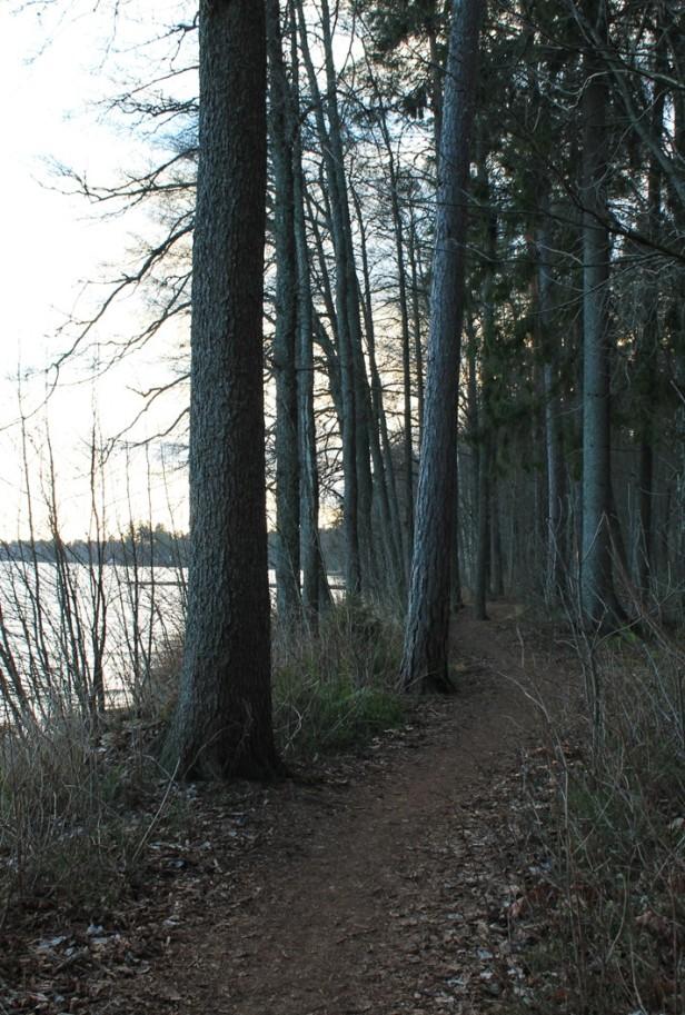 Littoisten helppokulkuinen luontopolku järvenrannassa