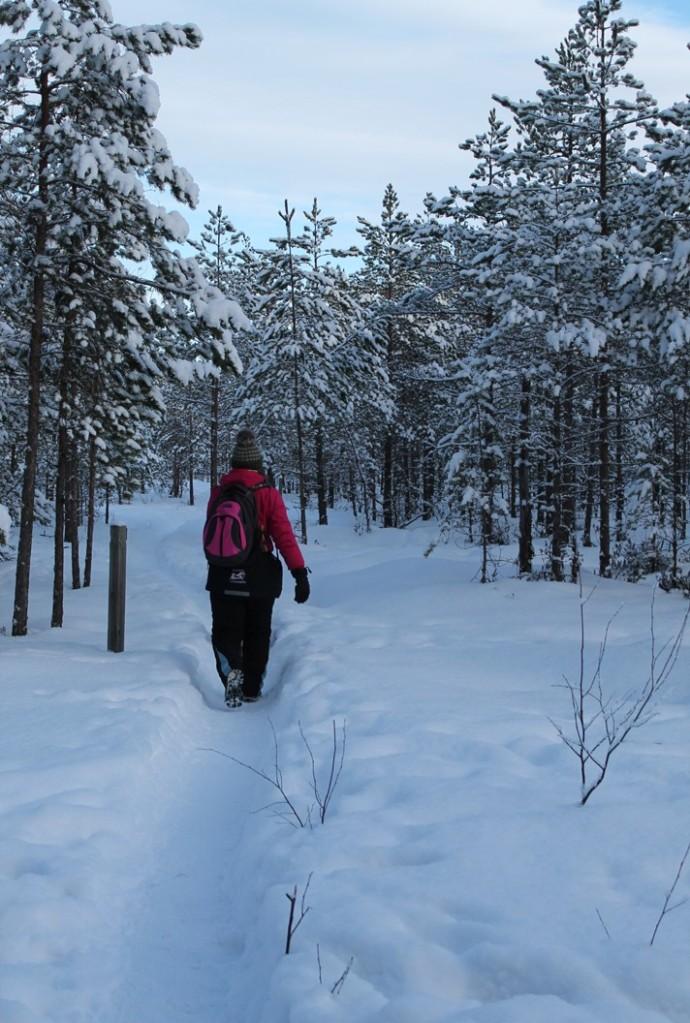Kävelyllä Turun Isosuolla lumiseen aikaan.