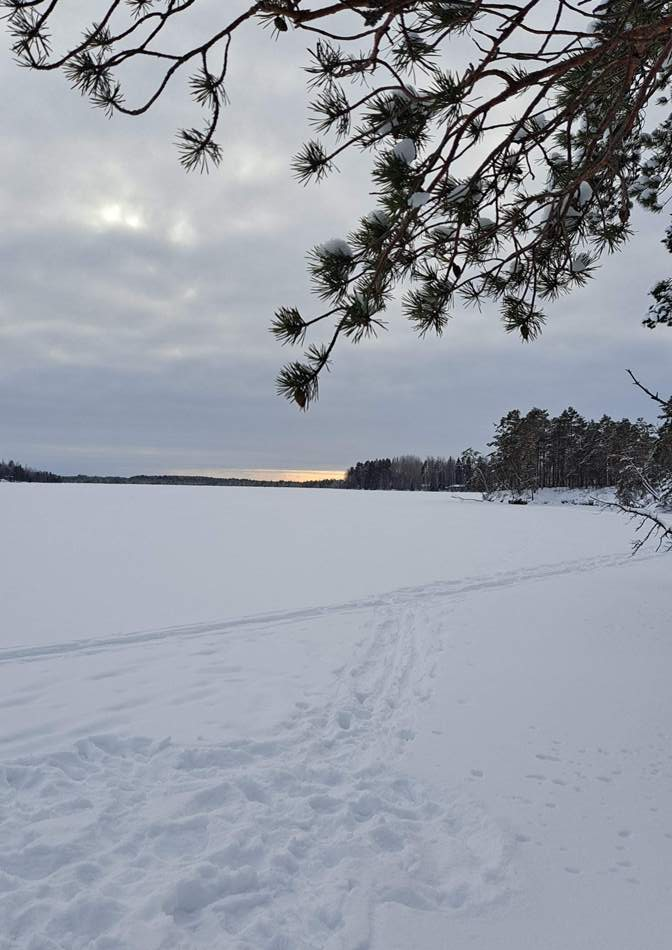 Talvinen Savojärvi