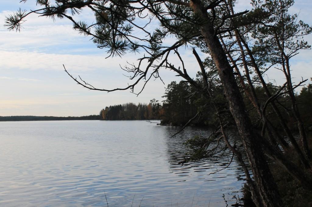 Syksyinen savojärvi