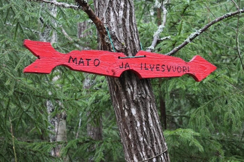 Laitilan kuntoradalta on yhteys Matovuoren ja Ilvesvuoren luontopolulle