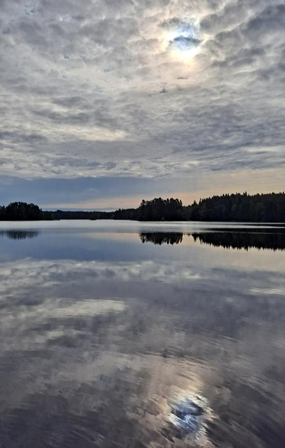 Kyynäränharju Liesjärven kansallispuistossa ja kesäaamun maisema